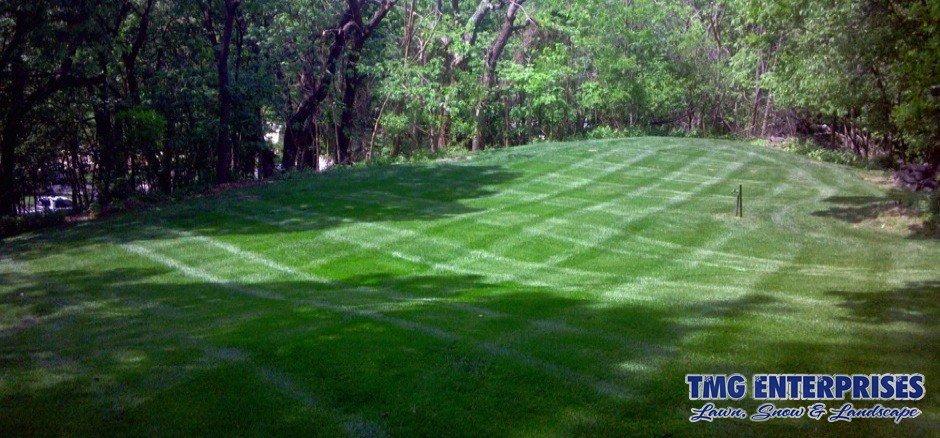 lawn-maintenance